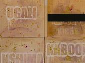 Erik Chevalier, Dieta a zona, 2006, acrilico su tela