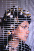 Sukran Moral, Bulbul, 2004, Performance con Paolo Fresu