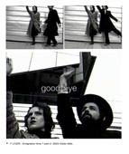 Y Liver, Ici l'ambassadeur, 2003, still da video, stampa digitale