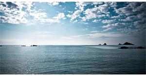 Pierluigi Dessì, Un giorno al mare, 2008