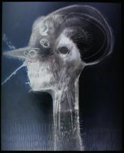Andrea D'Ascanio, Autoritratto sott'acqua con peli, 2009